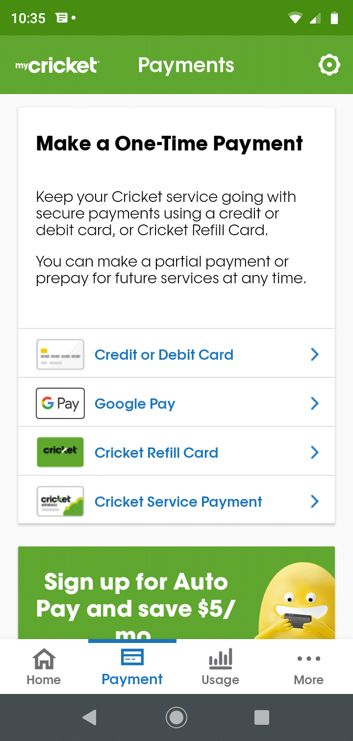 Cricket app screenshot of payments section