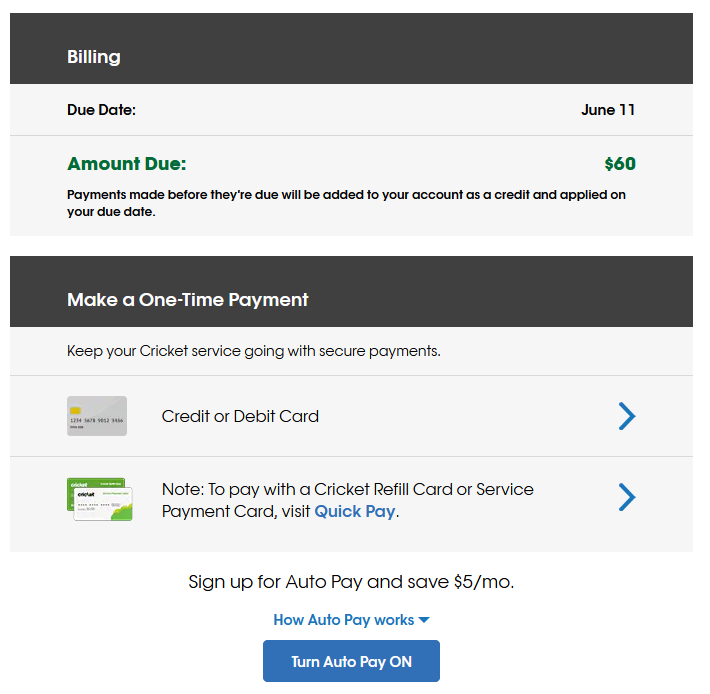 Screenshot of Cricket's web interface for payments